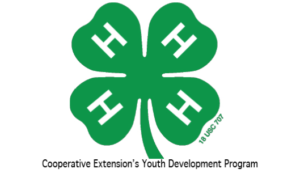 Cover photo for 4-H County Activity Day