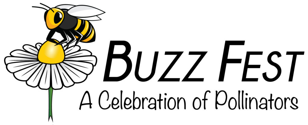 Buzz Fest logo image