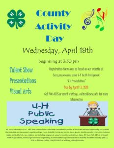 Cover photo for 4-H County Activity Day 2018