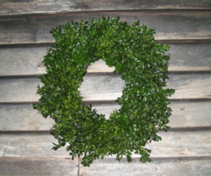 Photo of a Boxwood Wreath