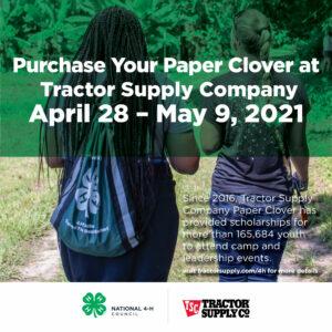 TSC Clover Paper Clover
