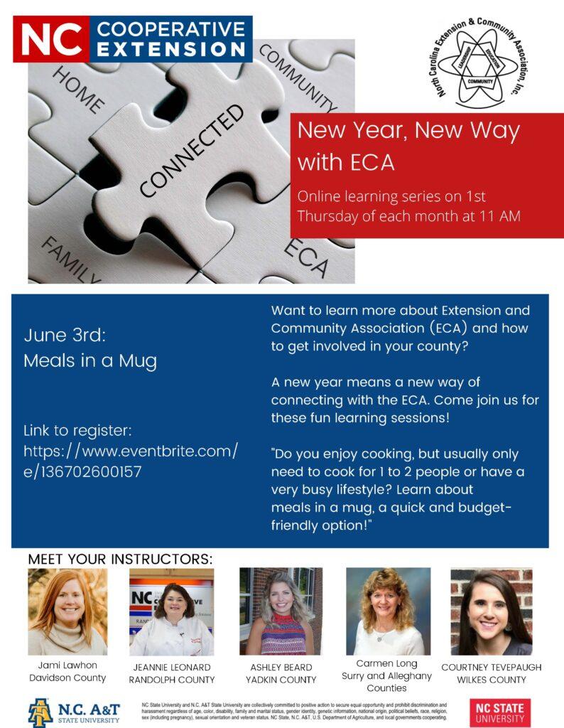 Flyer for Meals in a Mug Program.