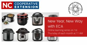 Cover photo for New Way With ECA: Understanding Your Electronic Pressure Cooker
